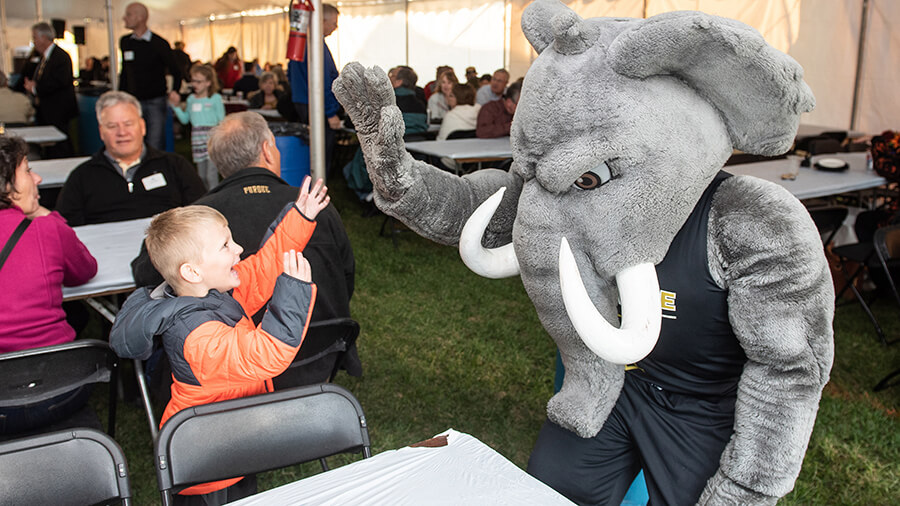 Don the Mastodon gives a high five to a child at an Alumni Relations event.