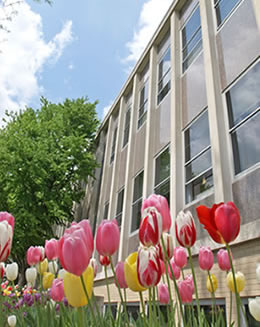 Kettler Hall with Spring Tulips