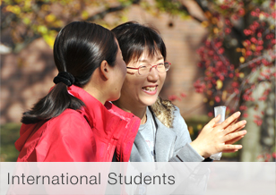 Graphic: International Students